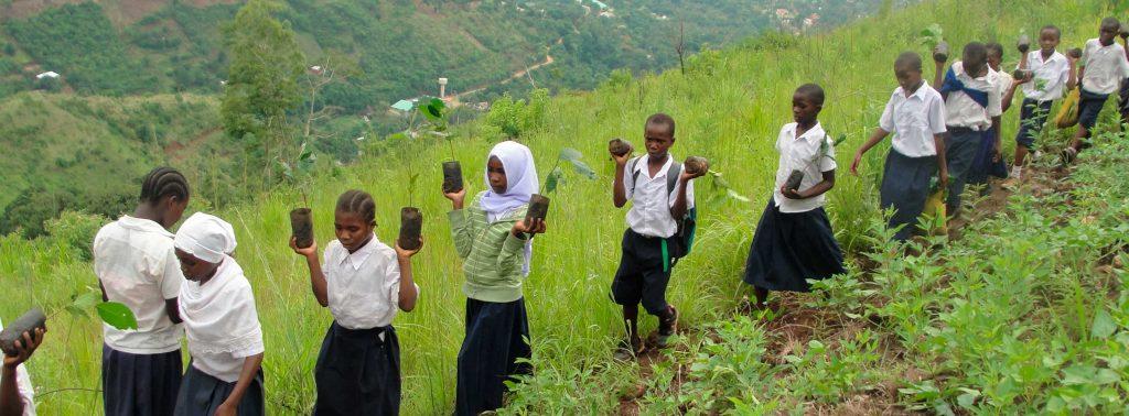 Afrikanische Roots & Shoots Mitglieder pflanzen Bäume an einem Hang