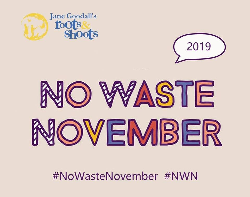 Jane Goodall's Roots & Shoots: No Waste November 2019 Logo