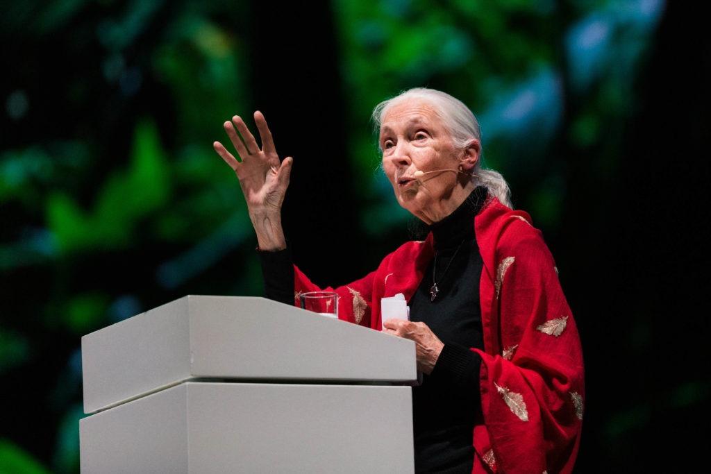 Jane Goodall im Showpalast München