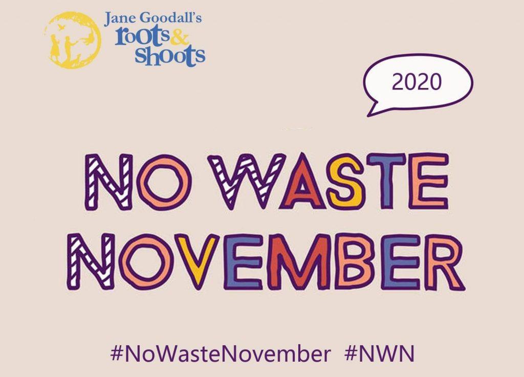 No Waste November 2020
