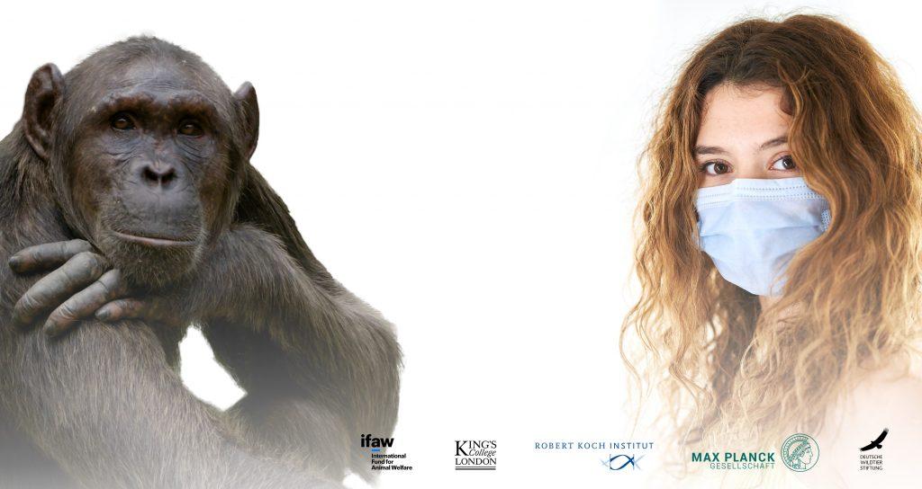 Frau mit Mundnasenschutz und Schimpansin Kudia. Logos von ifaw, King's College London, Robert Koch Institut, Max Planck Gesellschaft, Deutsche Wildtierstiftung.