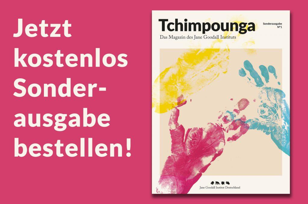 Teaser Tchimpounga Sonderausgabe kostenfrei bestellen
